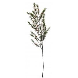 Ramo di pino e pigne piccole